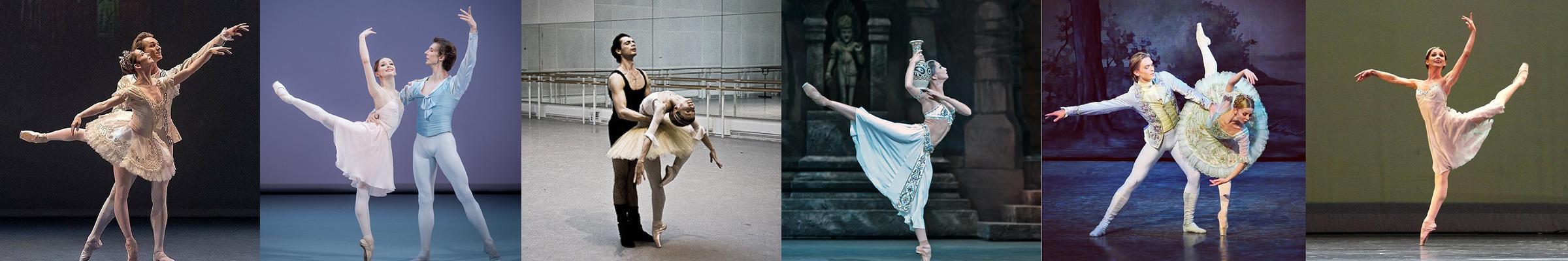 Evgenia Obraztsova Patron, Melbourne Academy of the Arts